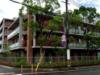 その人らしさを大切にする特養施設の看護職はヘルパー時給1650円~|尼崎市大島
