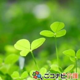 無資格・未経験~一緒に成長しましょう|デイ介護職|神戸塩屋
