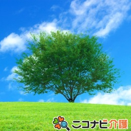 堺市西区|高時給で日勤のみ♪住宅型でメリハリつけて働こう!