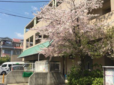 ≪神戸魚崎☆小規模施設≫グループホームでの介護スタッフ
